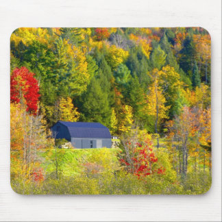 USA, Vermont. Fall foilage along Highway 100. Mouse Pad