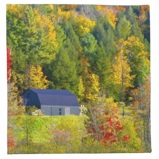 USA, Vermont. Fall foilage along Highway 100. Napkin