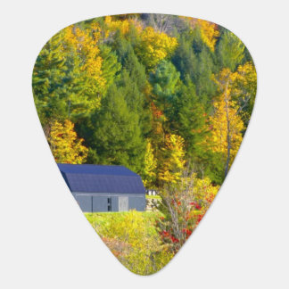 USA, Vermont. Fall foilage along Highway 100. Plectrum