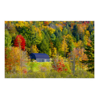 USA, Vermont. Fall foilage along Highway 100. Poster