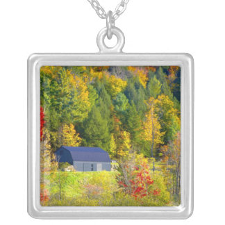 USA, Vermont. Fall foilage along Highway 100. Silver Plated Necklace