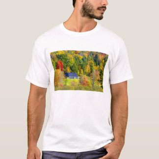 USA, Vermont. Fall foilage along Highway 100. T-Shirt