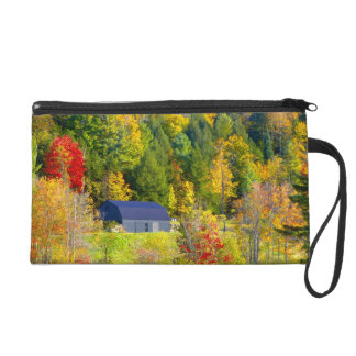 USA, Vermont. Fall foilage along Highway 100. Wristlet