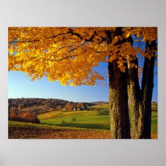 USA, Vermont. Farm Scenic Near South Woodstock Poster