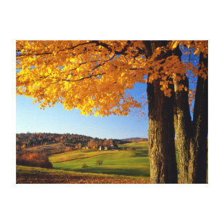 USA, Vermont. Farm Scenic Near South Woodstock Stretched Canvas Prints