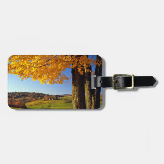 USA, Vermont. Farm Scenic Near South Woodstock Tags For Bags