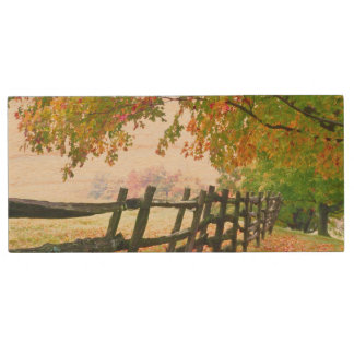 USA, Vermont. Fence under fall foliage. Wood USB 2.0 Flash Drive