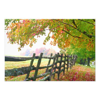 USA, Vermont. Fence under fall foliage. Photo Print
