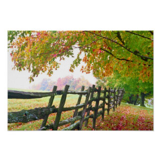 USA, Vermont. Fence under fall foliage. Poster