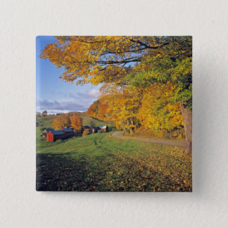 USA, Vermont, Jenne Farm. Fall comes to Jenne 15 Cm Square Badge