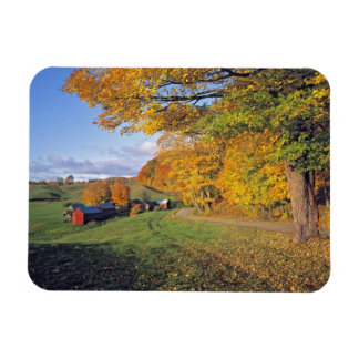 USA, Vermont, Jenne Farm. Fall comes to Jenne Magnet