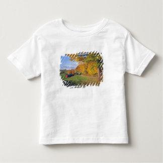 USA, Vermont, Jenne Farm. Fall comes to Jenne Tee Shirts