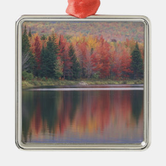 USA, Vermont, McAllister Lake, near Hazens Notch Christmas Ornament