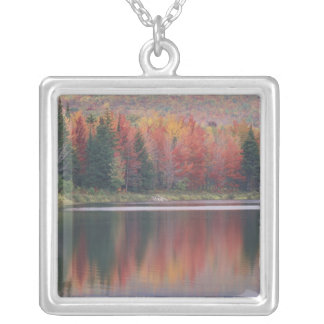 USA, Vermont, McAllister Lake, near Hazens Notch Silver Plated Necklace