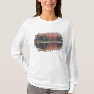 USA, Vermont, McAllister Lake, near Hazens Notch T-Shirt