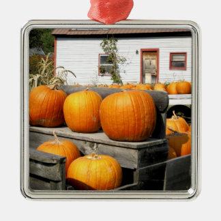 USA, Vermont. Pumpkins Christmas Ornament