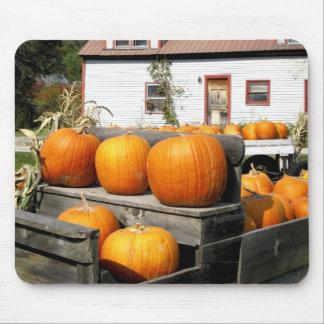 USA, Vermont. Pumpkins Mouse Pad