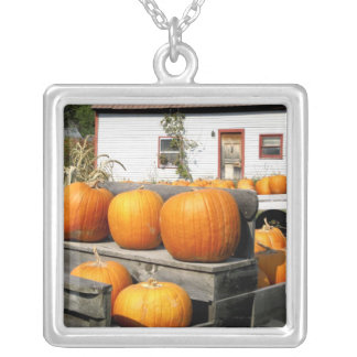 USA, Vermont. Pumpkins Silver Plated Necklace