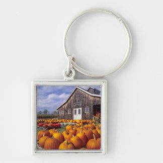USA, Vermont, Shelbourne, Pumpkins Key Ring