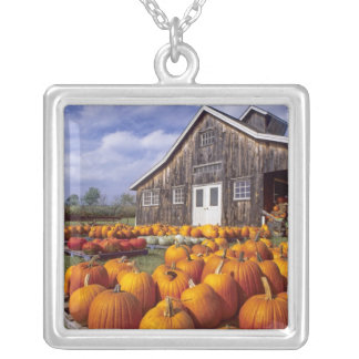 USA, Vermont, Shelbourne, Pumpkins Silver Plated Necklace