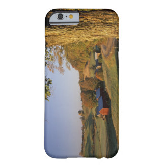 USA, Vermont, south Woodstock, Jenne Farm at Barely There iPhone 6 Case