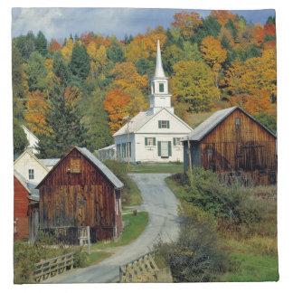 USA, Vermont, Waits River. Fall foliage adds Napkin
