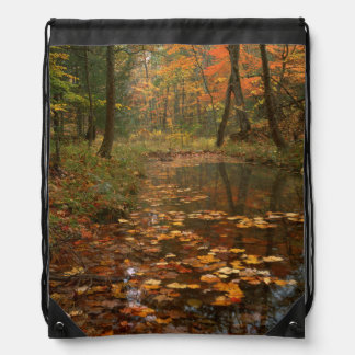 USA, Virginia, Autumn In Douthat State Park Drawstring Bag
