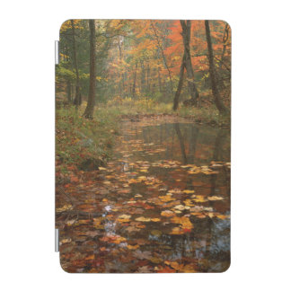 USA, Virginia, Autumn In Douthat State Park iPad Mini Cover