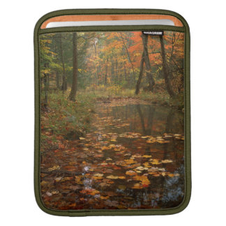 USA, Virginia, Autumn In Douthat State Park iPad Sleeve