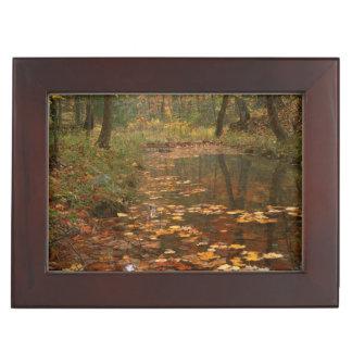 USA, Virginia, Autumn In Douthat State Park Keepsake Box