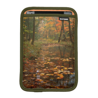 USA, Virginia, Autumn In Douthat State Park Sleeve For iPad Mini