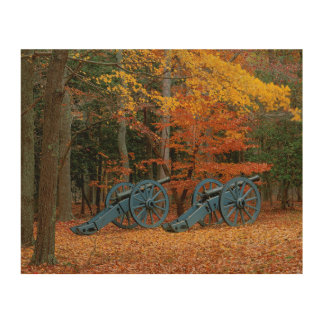 USA, Virginia, Colonial National Historic Park Wood Prints