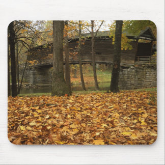 USA, Virginia, Covington, Humpback Covered Mouse Pad
