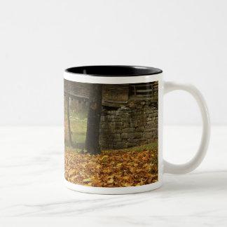 USA, Virginia, Covington, Humpback Covered Two-Tone Coffee Mug