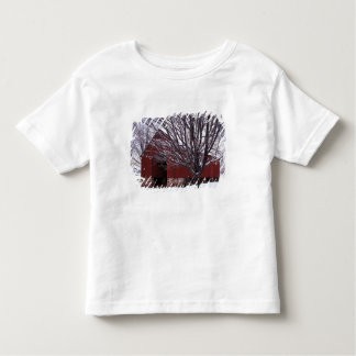 USA, Virginia, Fairfax County, Barn and Maple Toddler T-Shirt