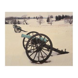 USA, Virginia, Manassas National Battlefield Wood Print