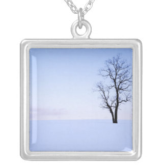 USA, Virginia, Page County, Black Locust Silver Plated Necklace