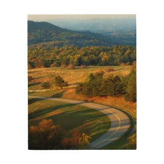 USA, Virginia, Patrick County, The Blue Ridge Wood Wall Art