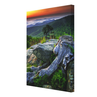 USA, Virginia, Shenandoah National Park. Canvas Print