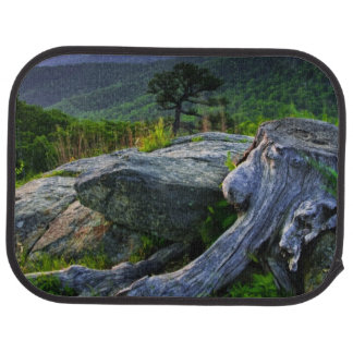 USA, Virginia, Shenandoah National Park. Car Mat