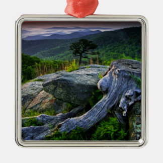 USA, Virginia, Shenandoah National Park. Christmas Ornament
