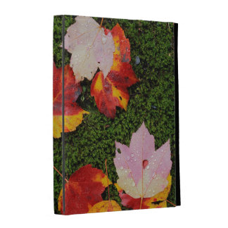 USA, Virginia, Shenandoah National Park iPad Folio Cases