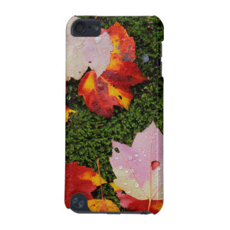 USA, Virginia, Shenandoah National Park iPod Touch (5th Generation) Covers