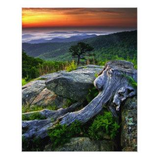 USA, Virginia, Shenandoah National Park. Photo Print