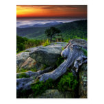 USA, Virginia, Shenandoah National Park. Postcard