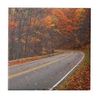 USA, Virginia, Shenandoah National Park, Skyline Tile