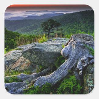 USA, Virginia, Shenandoah National Park. Square Sticker
