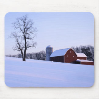 USA, Virginia, Shenandoah Valley, Barn Mouse Mat