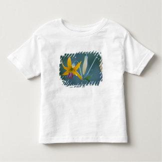 USA, WA, Mt. Rainier National Park. Columbia Toddler T-Shirt