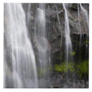 USA, WA, Mt. Rainier NP, Narada Falls Tile